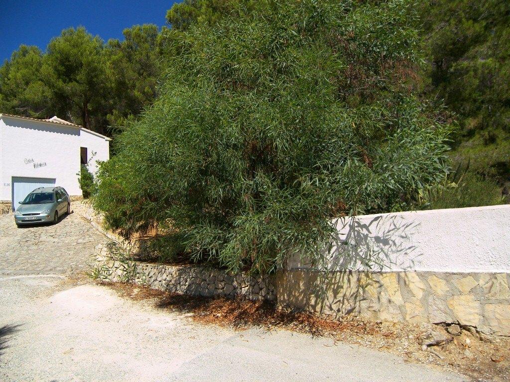 Terrain à vendre à Montemar , Benissa