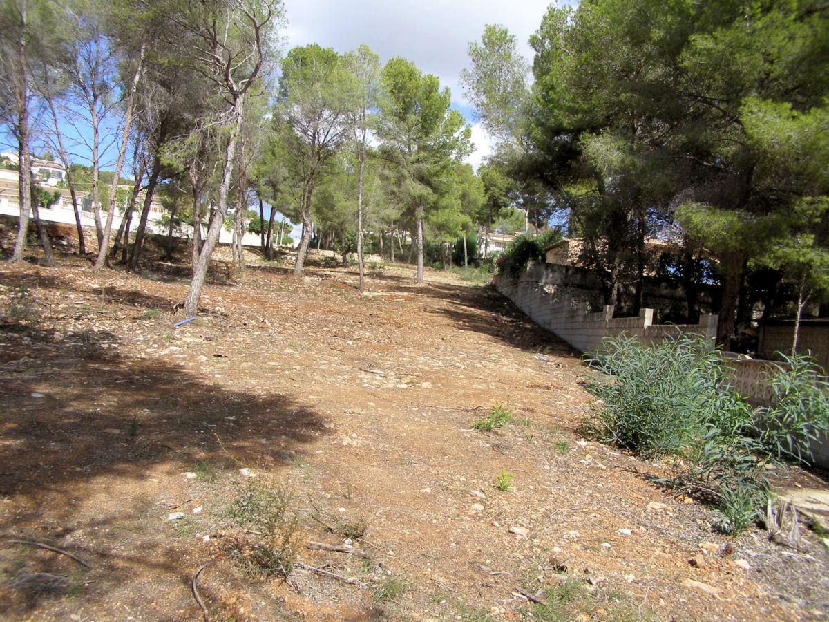 Différentes parcelles à vendre à Moraira, El Bosque