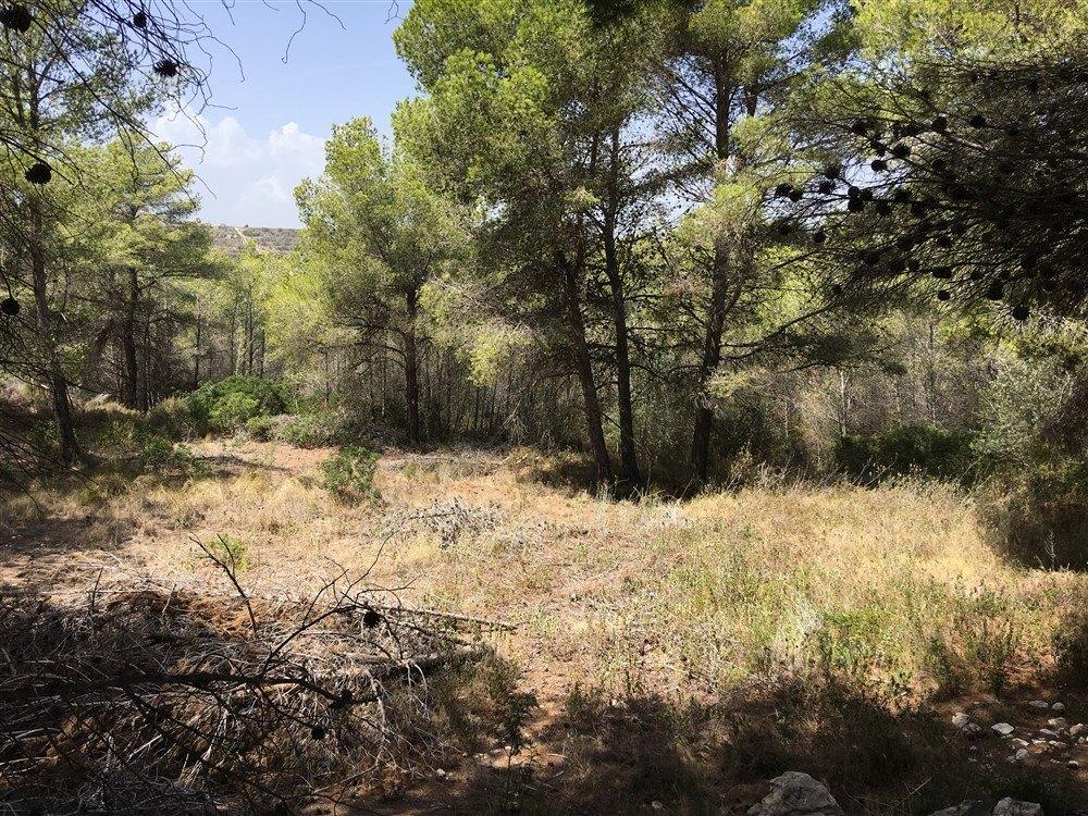 Terrain à vendre à Moraira, vue dégagée.